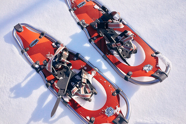 Pair of Red Snowshoes